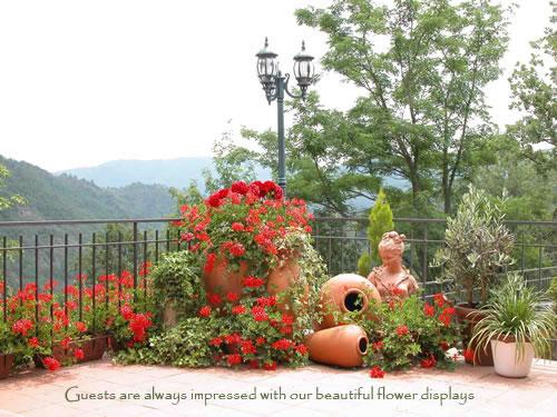 beautiful-flowers-gra